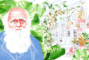 Great Thinker: Charles Darwin